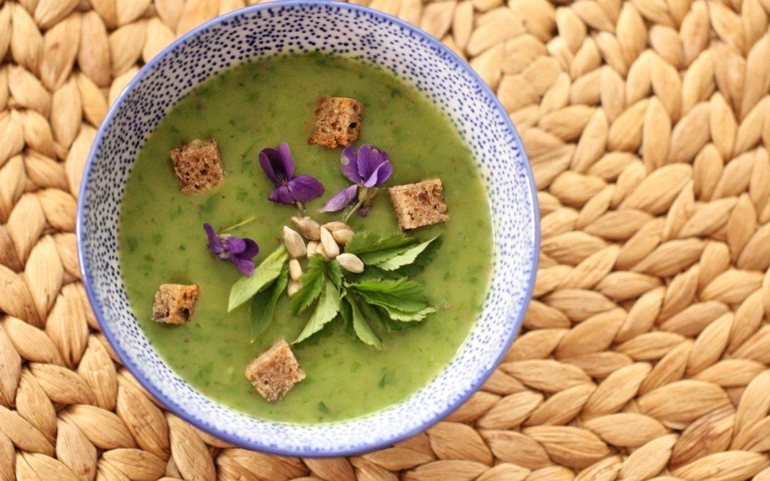 Variace zelených bylinkových polévek nejen na Zelený čtvrtek